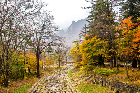 public offering: River with white stone river bed at Seoraksan national park during autumn season.