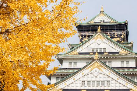 donjon: Osaka Castle with a five-layer donjon, Japan Editorial