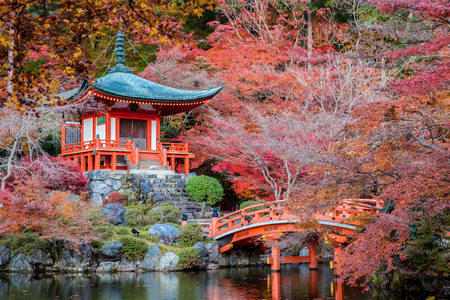 japan: Autumn season,The leave change color of red in Tample japan.