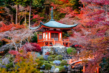 chinese pagoda: Autumn season,The leave change color of red in Tample japan.
