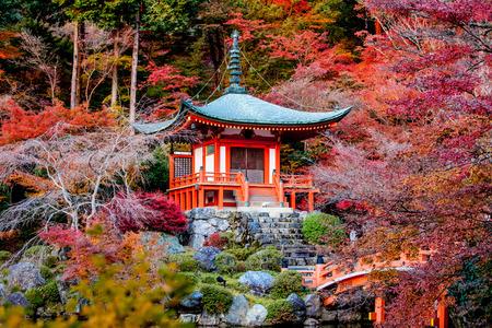 Herfst seizoen, Het verlof van kleur veranderen van rood in Tample japan.
