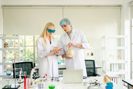 Two scientists are examining the skull in the laboratory. They are checking the age of the skull.