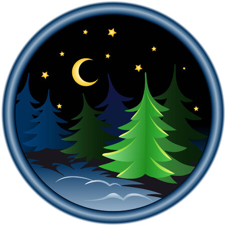 night in the winter forest Stock Vector - 5711641