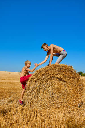 Wheat hay on an agricultural field. Two brothers are fooling around and laughing. Children's day in nature. Rural children on stubble. Friends having fun outdoors. The boys learn to help each other.