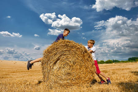 Two brothers are fooling around and laughing. Children's day in nature. Rural children on stubble.