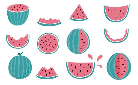Cute watermelon, melon object collection.Whole, cut in half, sliced on pieces melons. Vector illustration for icon,sticker,printable