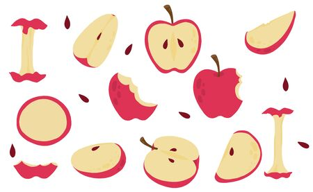 Cute apple object collection.Whole, cut in half, sliced on pieces apple. Vector illustration for icon, sticker,printable