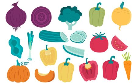Cute vegetable object collection.Whole, cut in half, sliced on pieces vegetable. Vector illustration for icon, sticker,printable