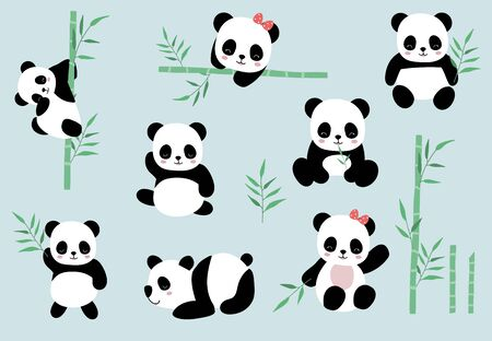 Collection of panda object set with bamboo, vector illustration set