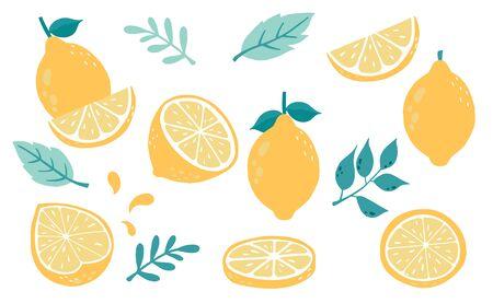Cute lemon, citrus object collection. Vector illustration