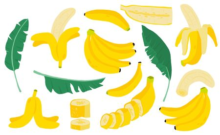 Cute banana fruit object collection.Whole, cut in half, sliced on pieces banana. Vector illustration Stock Illustratie