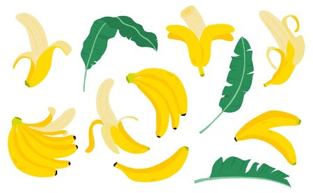 Cute banana fruit object collection.Whole, cut in half, sliced on pieces banana. Vector illustration for icon,logo,sticker,printable