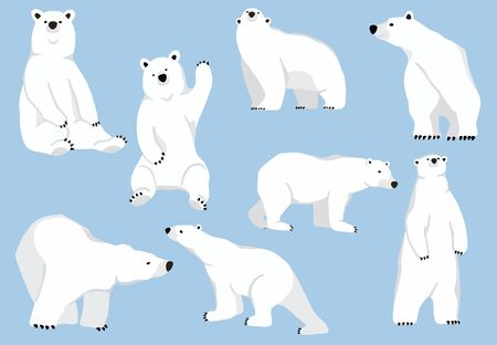 Simple white bear character.Vector illustration character doodle cartoon 일러스트