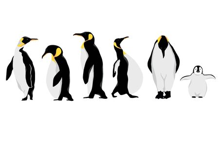 Simple white black penguin character.Vector illustration character doodle cartoon Standard-Bild - 134716965