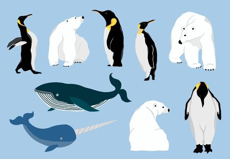Simple arctic animal with bear polar, penguin, whale.Vector illustration character doodle cartoon Illustration