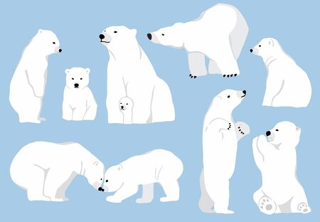 Simple white bear character.Vector illustration character doodle cartoon Illustration