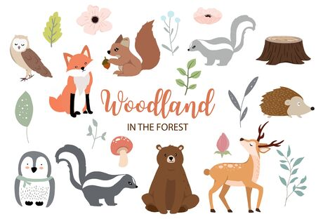 Cute woodland object collection with bear,owl,fox,skunk,mushroom and leaves.Vector illustration for icon,sticker,printable Ilustracja