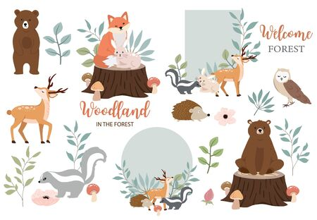 Cute woodland object collection