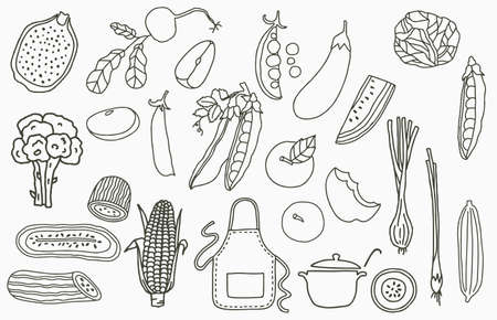 fruit collection  with apple,onion,lemon,cucumber.Vector illustration