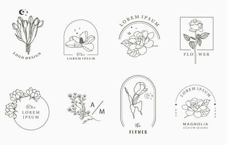 Beauty occult  collection with geometric,rose,lavender,magnolia.Vector illustration Stock fotó - 155624411