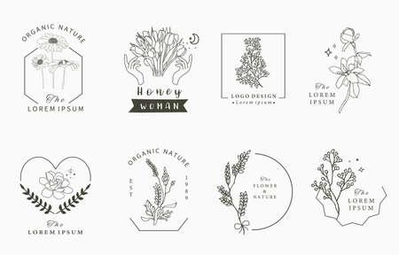 Beauty occult   collection with geometric,tulip,lavender,magnolia.Vector illustration Illusztráció