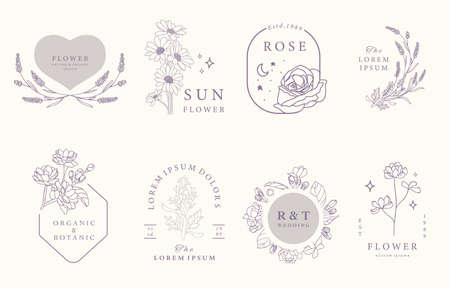 Beauty occult design collection with lavender,jasmine,rose.Vector illustration for icon,sticker,printable and tattoo