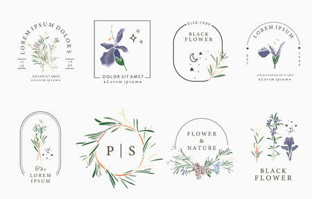 Line flower collection with rosemary.Vector illustration for icon,sticker,printable and tattoo