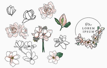 Line flower collection with magnolia.Vector illustration for icon,sticker,printable and tattoo
