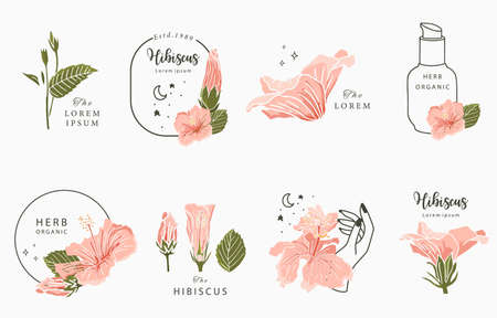 Beauty occult design collection with hibiscus.Vector illustration for icon,sticker,printable and tattoo