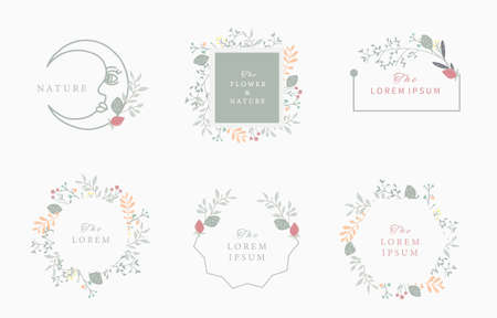 Nature frame collection with leaf and flower.vector illustration for banner and product Ilustração