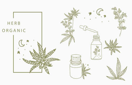 cannabis collection with bottle,oil,hand.Vector illustration for icon,sticker,printable