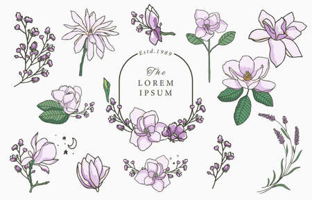 Beauty lavender,magnolia collection.Vector illustration for icon,sticker,printable and tattoo