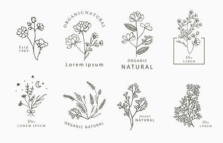 Beauty occult collection with geometric,lavender,moon,star,flower.Vector illustration for icon,sticker,printable and tattoo