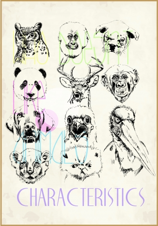 sketch wild animals Vector