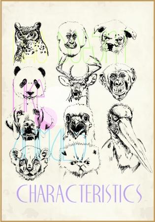 horse drawn: sketch wild animals