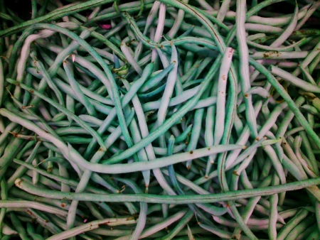 long bean: Closeup of fresh long bean Stock Photo