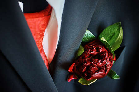 the boutonniere made of dark red peonies on groom's suit. preparing for the wedding. close-up