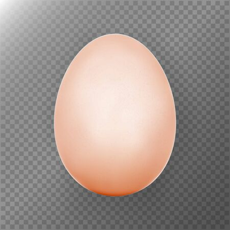 testicle: Chicken Egg. Transparent Background. Realistic Blank Of Natural Ecological Product. Healthy Food. Dietary Product. Easter Symbol. Egg Template For Your Design. Photo realistic Vector Illustration Illustration