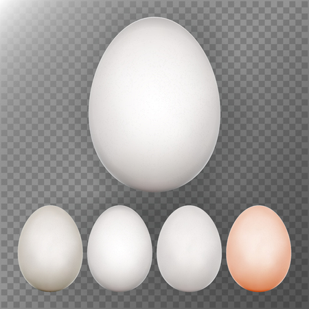 testicle: Chicken Egg Set. Transparent Background. Realistic Blank Of Natural Ecological Product. Healthy Food. Dietary Product. Easter Symbol. Egg Template For Your Design. Vector Illustration
