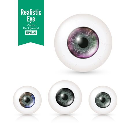 oversee: Human Eyeballs Set With Big Irises In Colour. Vector Illustration Of 3d Glossy Detailed Eye With Shadow And Reflection. Cornea. Front View. Isolated On White Background