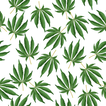 Cannabis Background. Marijuana Hemp Texture. Green Leaf Hashish