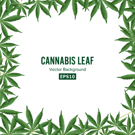 Cannabis Background. Vector Marijuana Frame Green Leaf