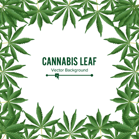 Cannabis Background. Vector Marijuana Frame Green Leaf