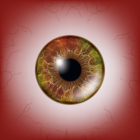 Red Eye. Scary Bloody Realistic Eyeballs. Spooky Human Eyeball With Grunge Blood Splatter. Vector
