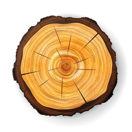 断面木木製の切り株のベクトル。年輪とラウンド カット