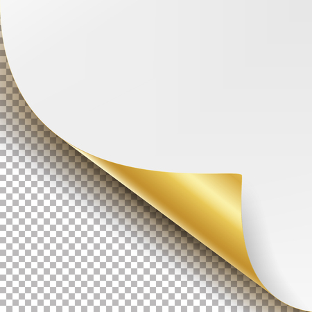 Curled Golden Metalic Corner Vector. White Paper with Shadow Mock up Close up Isolated on Transparent Background