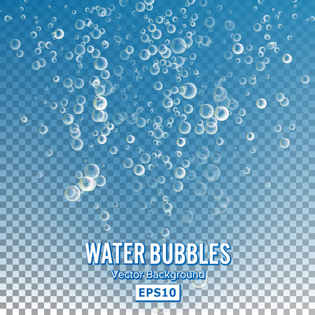 Bubbles In Water On Transparent Background. Glossy Realistic Bubble And Translucent Aqua Bubble Illustration