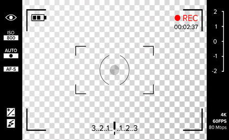 Camera Viewfinder Vector. Photo Or Video Camera Grid With Shooting Settings And Options On Screen. Recording Led Blinked. Realistic Corner Fall Off Background Vettoriali