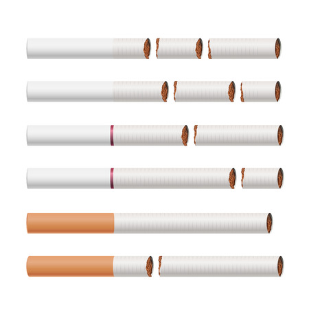 Broken Cigarettes Vector. Smoking Kills. Medical Healthcare Quit Smoking Concept. Tobacco Leaves. Realistic Illustration. Isolated On White. Illustration
