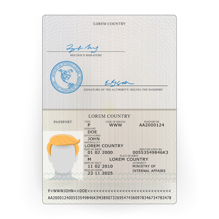 International Passport Vector. Sample Personal Data Page. International Identification Document. Illustration